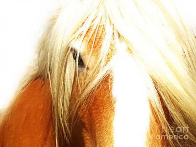 Photograph - Eye To Eye Dreamy II by Debbie Portwood