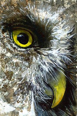 Painting - Eyes Of Owl's 23 by John D Benson