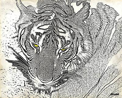Photograph - Eyes Of The Tiger - A Charcoal Sketch by Christine S Zipps