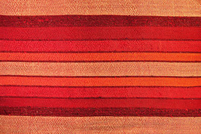 African Fabric Photograph - Fabric by Tom Gowanlock