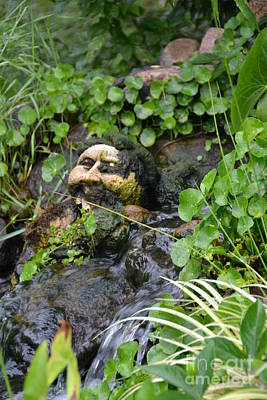 Photograph - Face In The Moss 02 by Bonnie Myszka