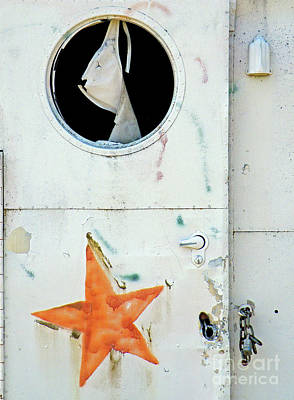 Urbanex Photograph - Faded Star by Joe Jake Pratt