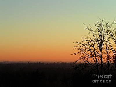 Fading Day Art Print by Gayle Swigart