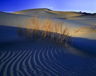 Photograph - Fading Light Death Valley by Joe  Palermo