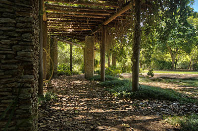 Photograph - Fairchild Botanical Gardens Hdr by Andres Leon