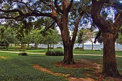 Digital Art - Fairhope Lower Park 2 Trees by Michael Thomas