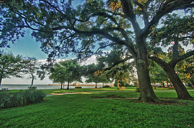 Fairhope Lower Park 4 Original