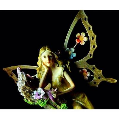 Fairy Photograph - Fairy. #webstagram #editoftheday by Jason Butts
