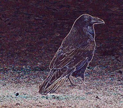 Photograph - Faithful Raven by Eric Tressler