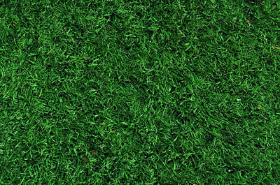 Background Photograph - Fake Grass Used On Sports Fields by Brandon Bourdages