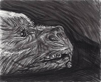 Neverending Story Drawing - Falkor With The Auryn by Michael Morgan