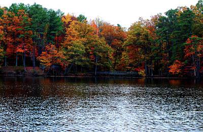 Fall Across The Lake Art Print by Linda Mesibov