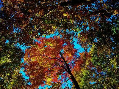 Photograph - Fall Arrives ... by Juergen Weiss