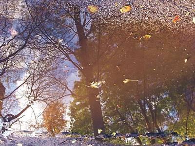 Fall Asphalt Print by Anna Villarreal Garbis