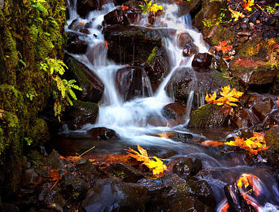 Photograph - Fall At Wahkeena by Jon Ares