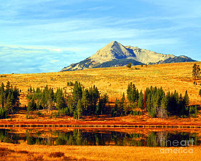 Photograph - Fall At Yellowstone National Park Swan Lake by Schwartz Nature Images