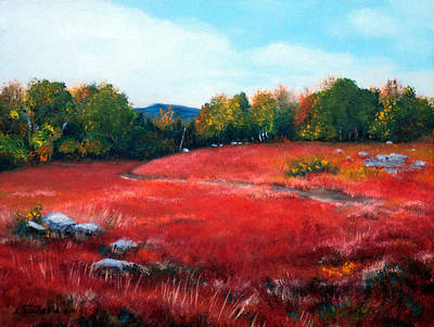 Maine Landscapes Painting - Fall Blueberry Field 2011 by Laura Tasheiko