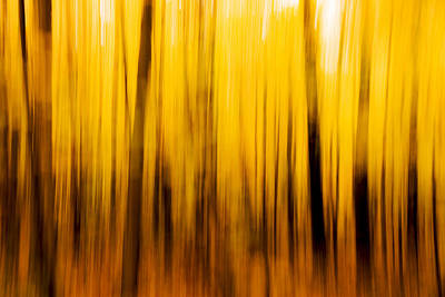 Photograph - Fall Blur by Robert Clifford