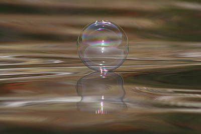 Photograph - Fall Bubble by Cathie Douglas