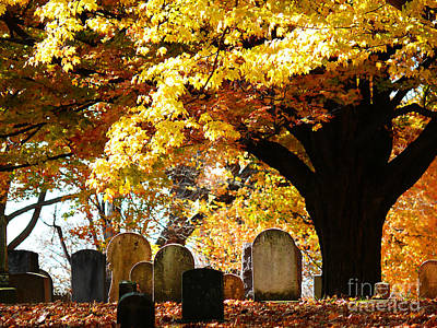 Art Print featuring the photograph Fall Cemetery by Jeanne  Woods