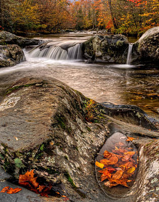 Bath Time Rights Managed Images - Fall Color Royalty-Free Image by Charlie Choc