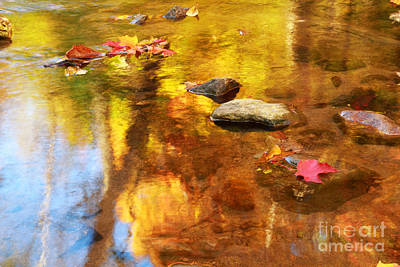 Fall Color In Stream Art Print by Charline Xia