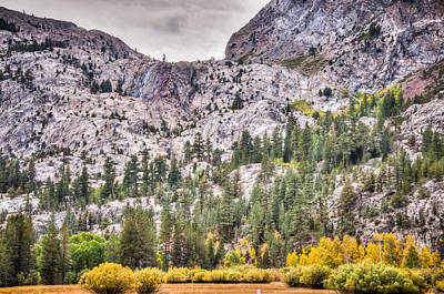 Photograph - Fall Color June Lake Loop by Connie Cooper-Edwards