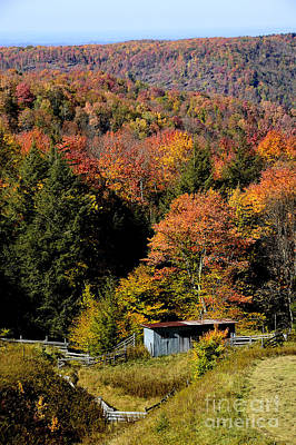 Fall Color West Virginia Art Print