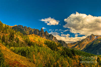 Photograph - Fall Colors At The Dallas Divide by Harry Strharsky