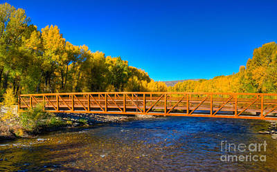 Photograph - Fall Colors At The Gunnison River Bridge by Harry Strharsky