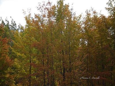 Fall Colors Colection - Michigan Art Print