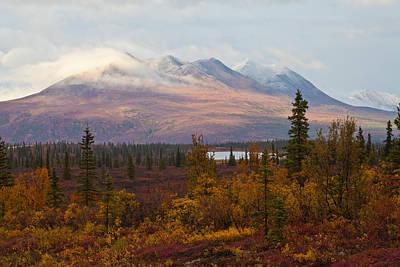 Fall Colors Of Alaska Art Print