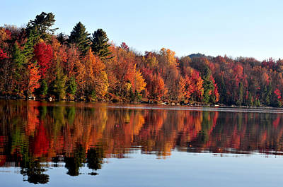 Photograph - Fall Colors by Peter DeFina