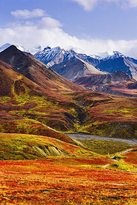 Fall Colours And Alaska Range, Denali Art Print by Yves Marcoux
