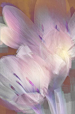 Fall Crocus Art Print by Jill Balsam