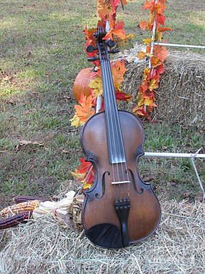 Photograph - Fall Fiddle by Sandy McIntire