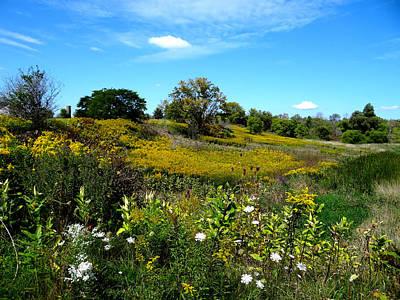 Mixed Media - Fall Fields Near Petrolia by Bruce Ritchie