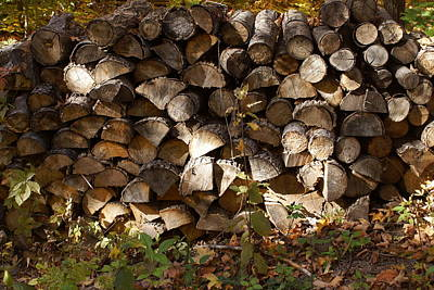Photograph - Fall Firewood by Ron Read