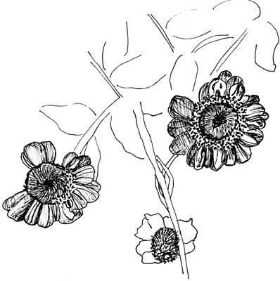 Dead Heads Drawing - Fall Flowers by Elizabeth Thorstenson