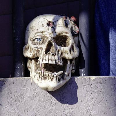 Skull Photograph - Fall  Halloween On Tillson Street by LeeAnn McLaneGoetz McLaneGoetzStudioLLCcom