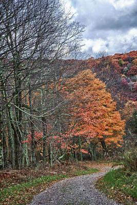 Photograph - Fall Hiking Near Mountain Lake by James Woody