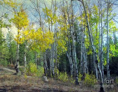 Autumn Landscape Mixed Media - Fall In Cascade Mountains by Irina Hays