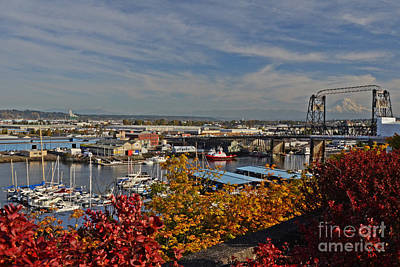 Photograph - Fall In Tacoma by Jack Moskovita