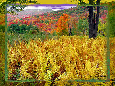 Photograph - Fall In The Catskill  by Ericamaxine Price