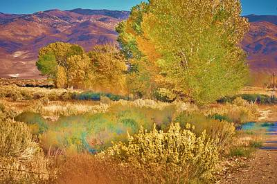Photograph - Fall In The Eastern Sierras 3 by Helen Carson
