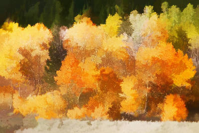 Brown Leaves Photograph - Fall In The Sierra IIi by Carol Leigh