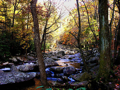 Photograph - Fall In The Smokies by Helen Haw
