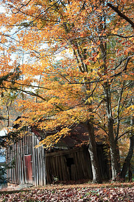 Photograph - Fall In West Virginia by Janet Pugh