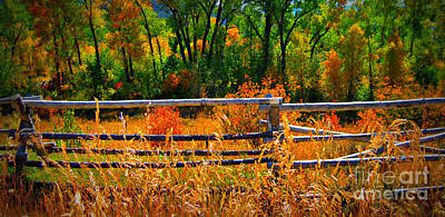 Art Print featuring the photograph Fall  by Janice Westerberg