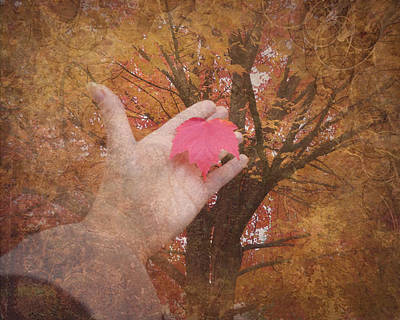 Photograph - Fall Leaf In Hand by Cindy Wright